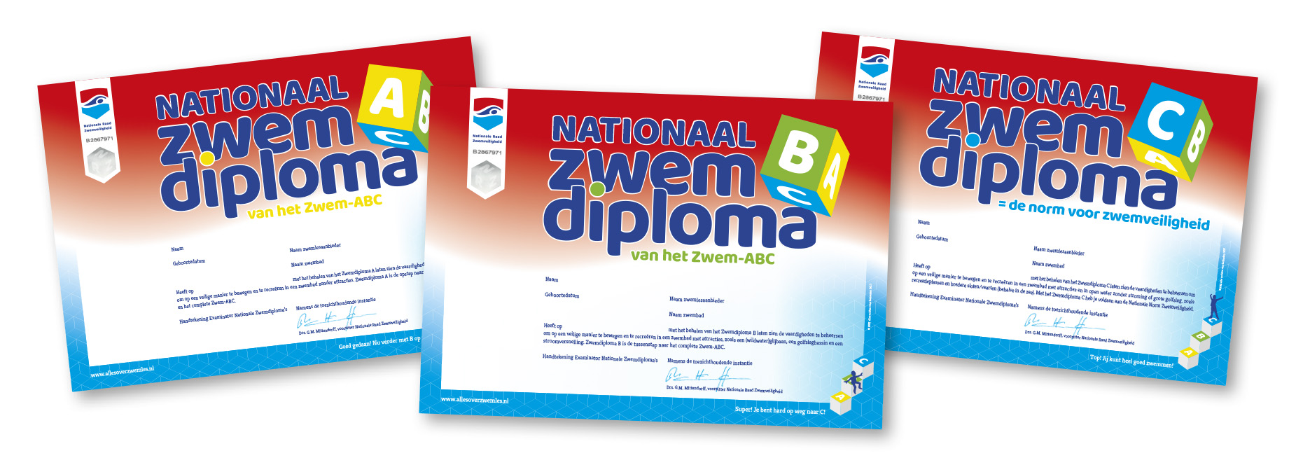 Diploma C Alles Over Zwemles